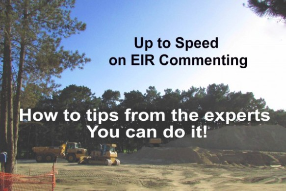 EIR Commenting Flat