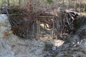 Lower Sawmill Borrow